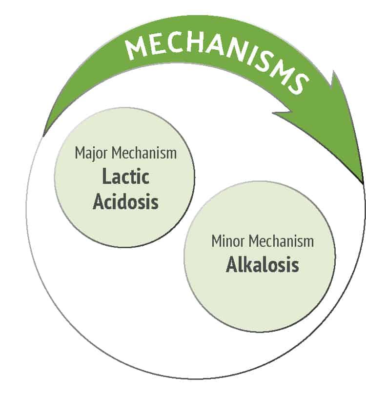 mechanism the nhcaa