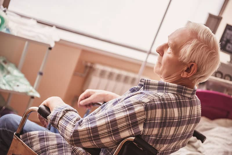 Addressing Alzheimer's Effectively with Nutrition