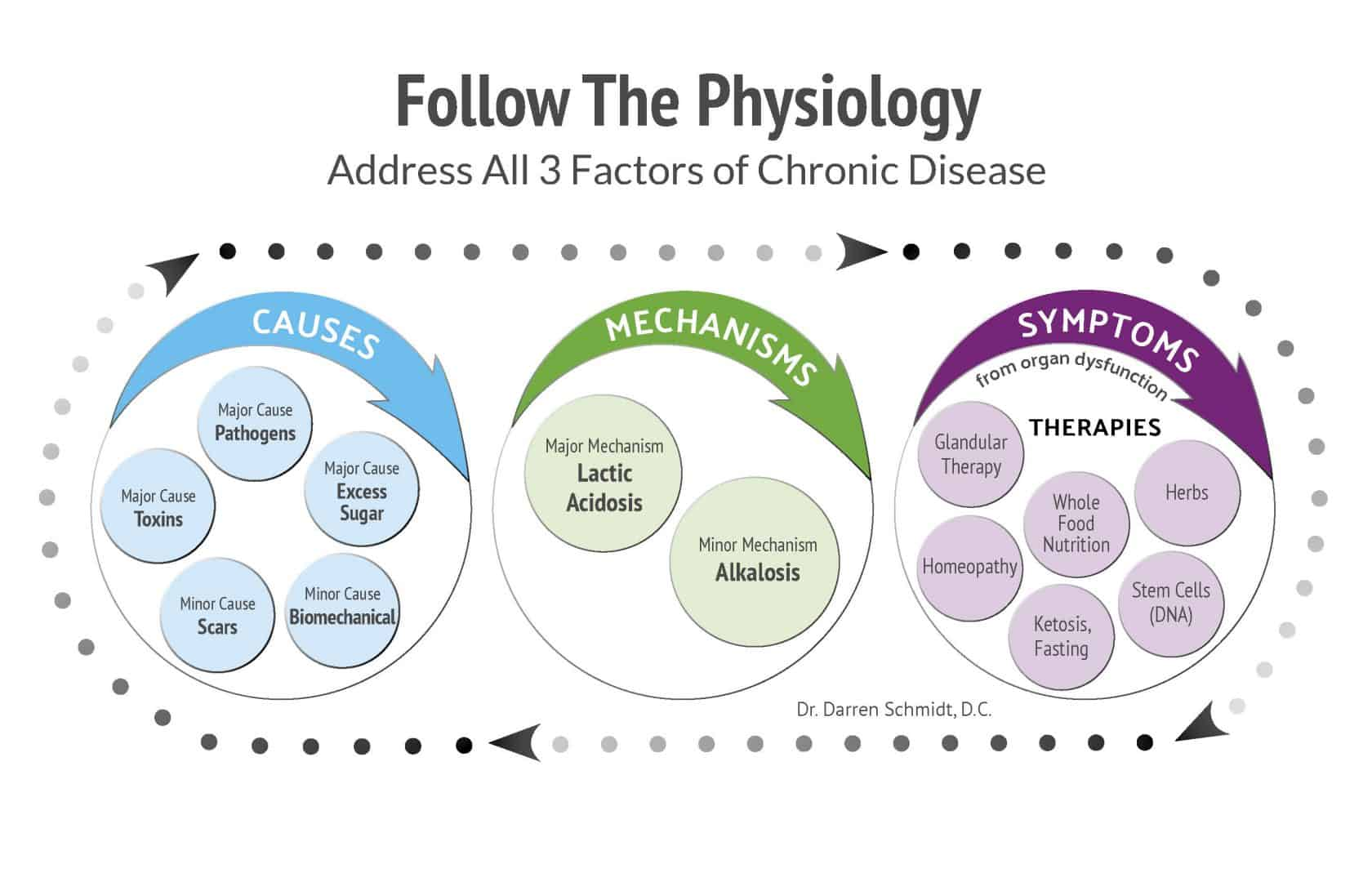 follow-the physiology graphic the nhcaa