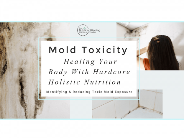Mold Toxicity - What to do about it course image