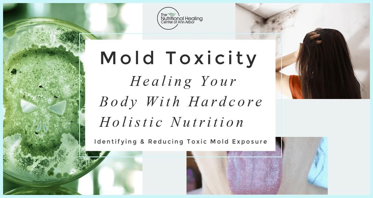 Mold Toxicity Course