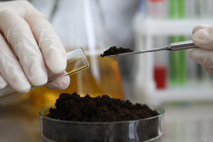 special dirt can provide a benefit for detoxing the real way