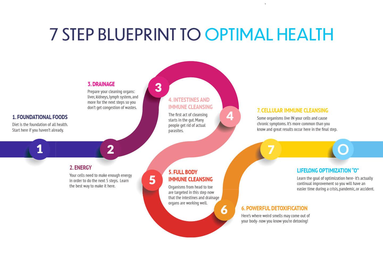 7 Step Blueprint to Optimal Health - Main
