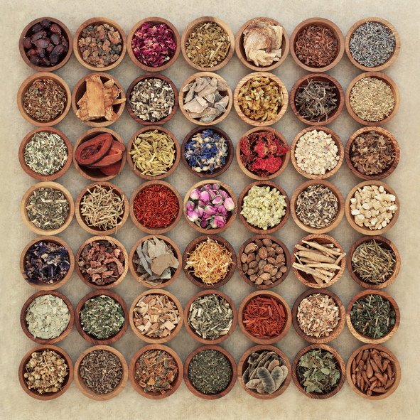 mother nature herbs heal the body