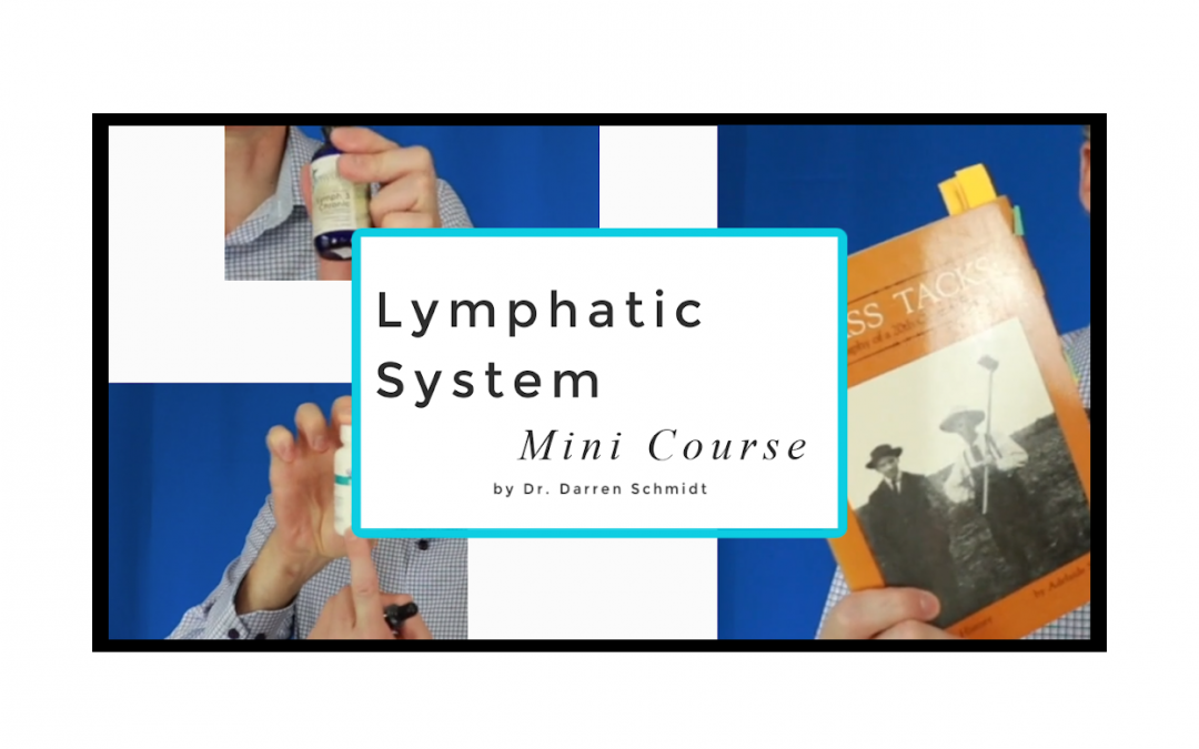 Lymphatic System Mini Course