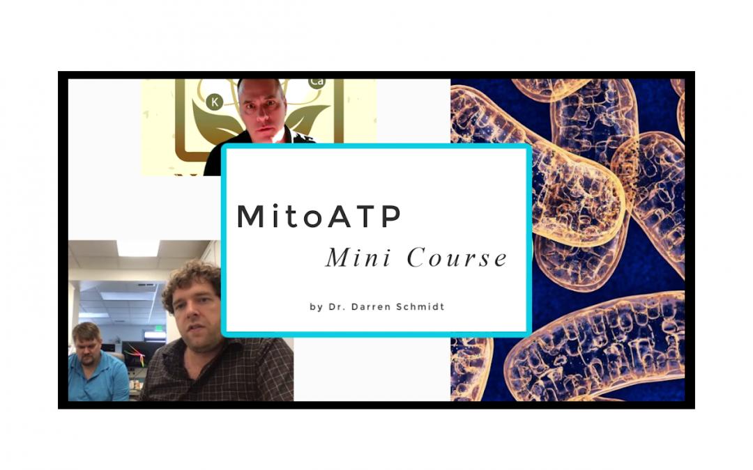 MitoATP Mini Course
