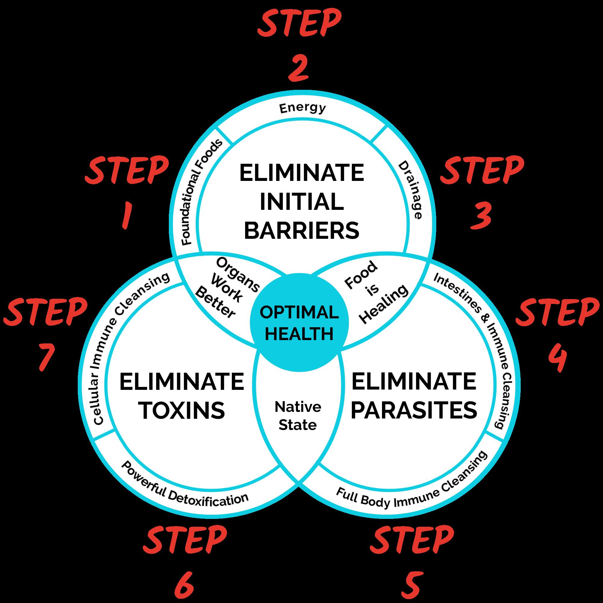 7 Step Blueprint To Optimal Health - 3 Pillars - Step numbers
